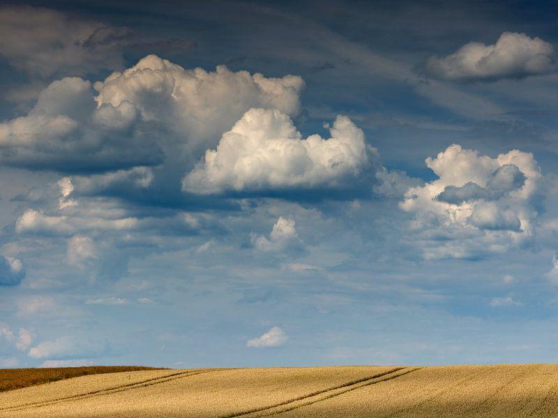 Wolkenstimmung über einem Getreidefeld von Andreas Müller