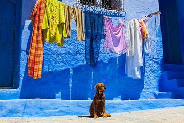 Marokko sur Bart van Eijden