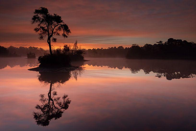 Sunrise in Oisterwijk van Freddy Van den Buijs