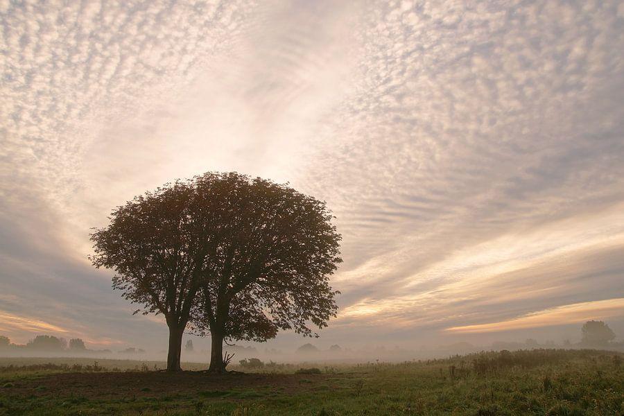 sky van Dirk van Egmond
