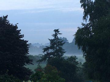 Nebel im Moor van