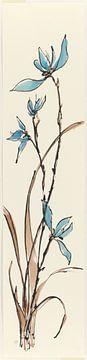 Frühling I - Blue Orchid, Chris Paschke von Wild Apple