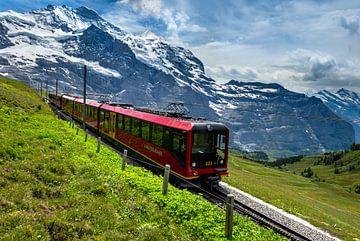Jungfraubahn, Grindelwald, Zwitserland van Adelheid Smitt