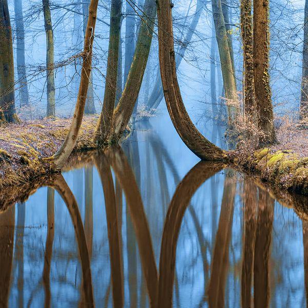 River of Reflections 2 van Lars van de Goor