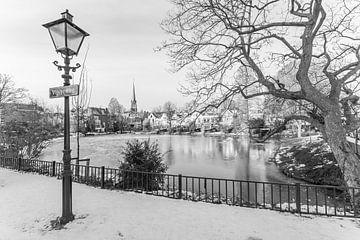De vijver in Rotterdam Kralingen vanaf de Vijverweg van MS Fotografie | Marc van der Stelt