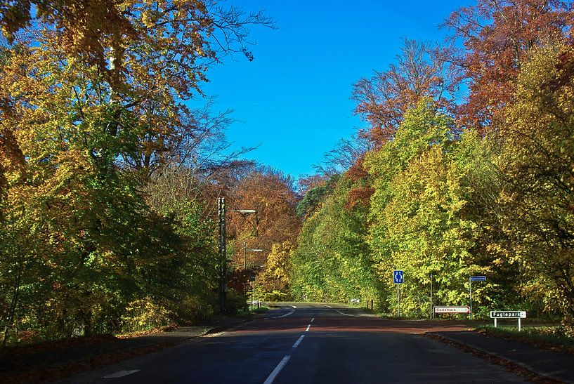 La route en automne (Danemark) sur Norbert Sülzner