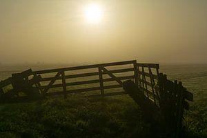 Mistig hek in de polder