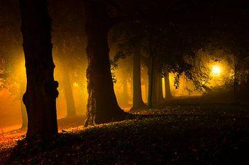 Le côté obscur sur Tvurk Photography