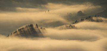Pieniny-Gebirge von Wojciech Kruczynski