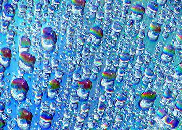 Condensation van Caroline Lichthart