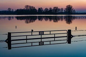 Hoge waterstand in de IJssel  von Michel Knikker