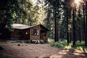 Waldhütte von Oliver Henze
