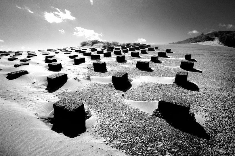 Duinlandschap met zeewering (zwart-wit) van Rob Blok