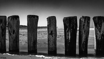 Zeeuwse kust von Lia Lavoir