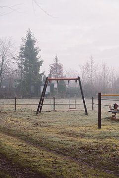 Balançoire dans la brume du matin sur Robin van Steen