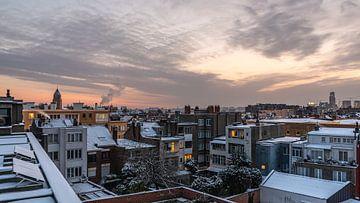 Besneeuwde zonsopgang van Werner Lerooy