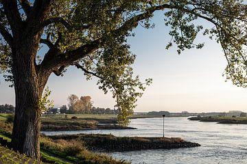 Flusslandschaft IJssel von Jim van Iterson