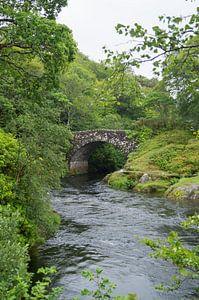 Een stroomversnelling onder een brug