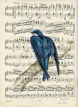 Swallow van sarah Loecker