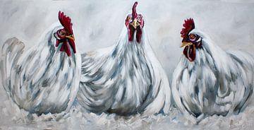 Kippen in wittinten sur Bianca ter Riet