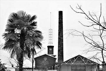 Industriegebäude mit Palmen, schwarz und weiß von Maud De Vries