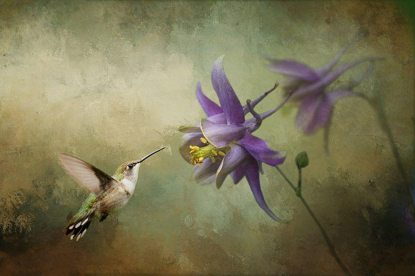 Kolibri mit violetter Blüte und grünem Hintergrund von Diana van Tankeren