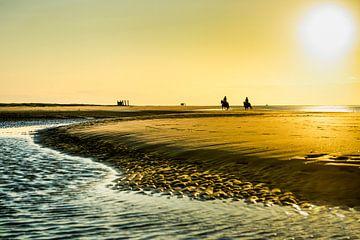 Reiten an der Küste Zeelands von Paula Romein