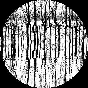 A bunch of black lines van Harald Harms