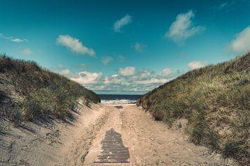 De weg naar het strand - zomer aan de Noordzee van Steffen Peters
