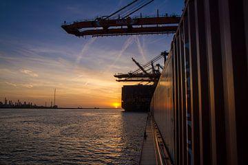 Maasvlakte Rotterdam von Rob Altena