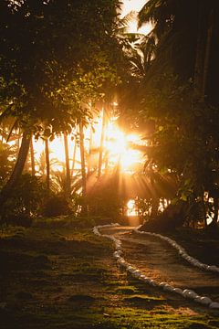 Coucher de soleil Mentawai