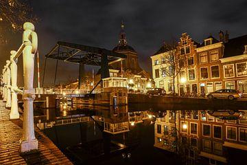 Alter Cardigan in Leiden von Dirk van Egmond