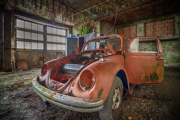 Coccinelle Volkswagen sur Manja van der Heijden