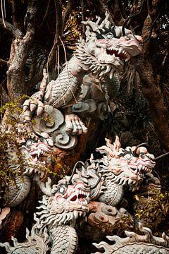 Marble Dragons von Insolitus Fotografie