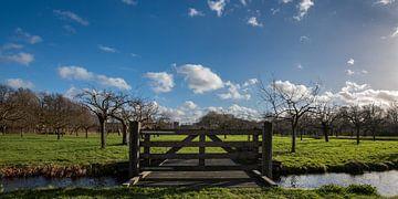 Schöner bewölkter Himmel über dem Obstgarten in Bredius, Woerden von John Verbruggen