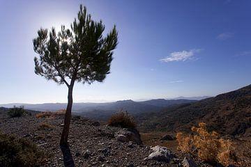 Landschap op Kreta, Griekenland van Coos Photography