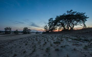 Blaue Stunde von Danny Slijfer Natuurfotografie