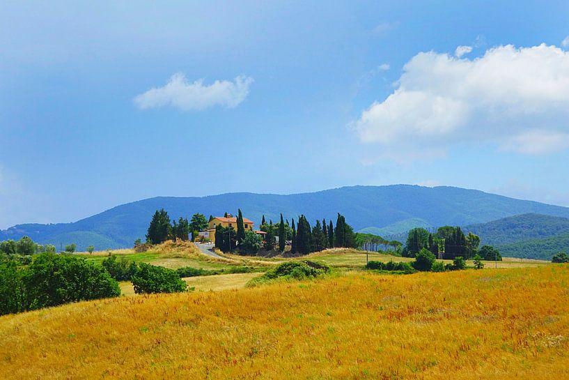 Toscane countrysite van Harry Hadders