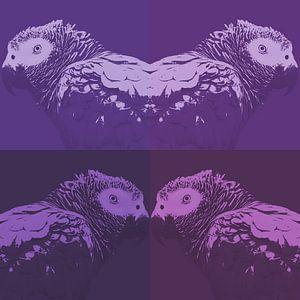 Papegaai in vier tinten paars