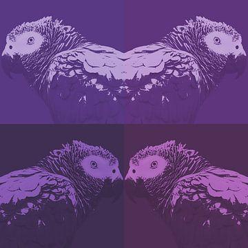 Papegaai in vier tinten paars van Leo Huijzer