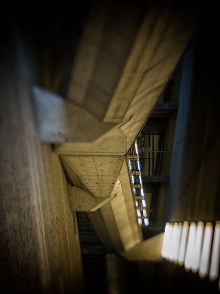 Concrete jungle van Lex Schulte