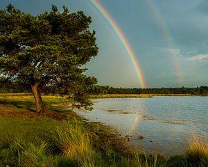 Onder een dubbele regenboog