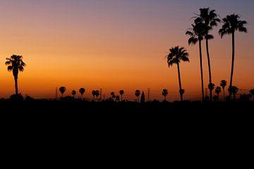 California Love van