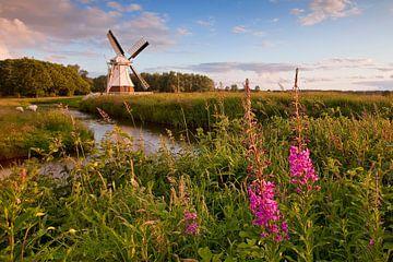 Windmühle, Niederlande von Peter Bolman