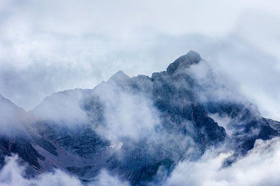Majestic van Harold van den Berge