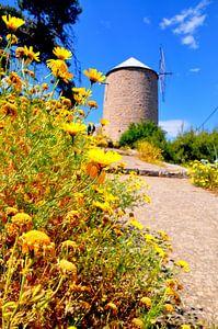 Yellow Mill van