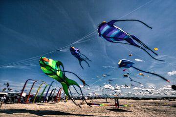 7. Drachenfestival SPO van Dirk Bartschat