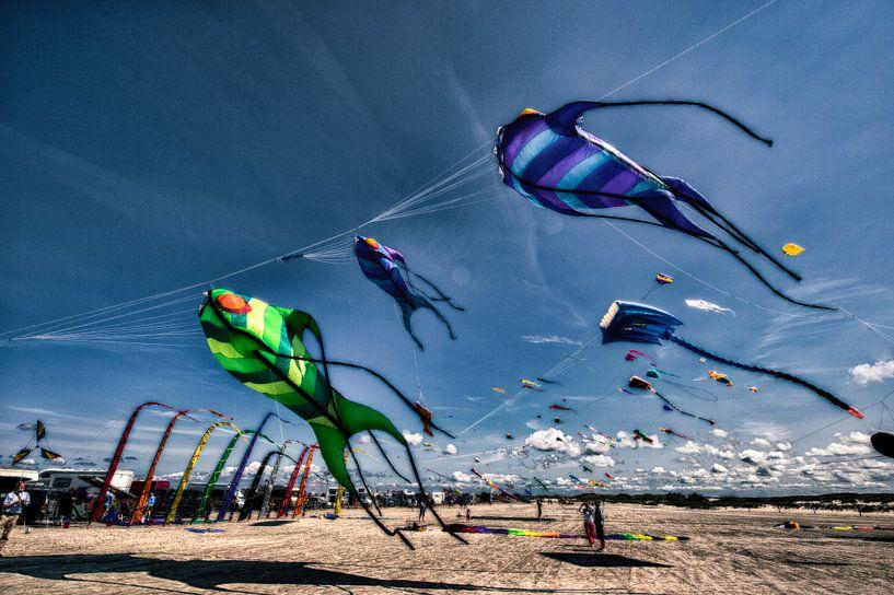 7. Drachenfestival SPO von Dirk Bartschat