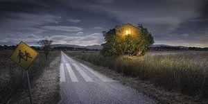 Landschap in Frankrijk bij Nacht van Everards Photography