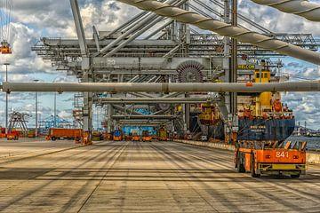 APM Containerterminal Maasvlakte II  Rotterdam van Leon Okkenburg